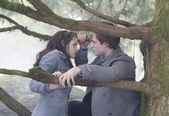 Объяснение Беллы и Эдварда
