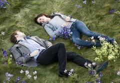 Эдвард и Белла: на цветущем лугу.