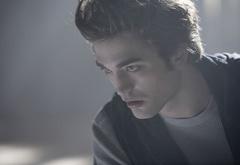 Эдвард, почувствовавший кровь