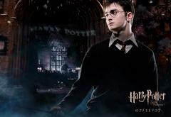 Гарри в Хогвартсе