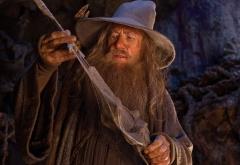 Гэндальф с эльфийским клинком