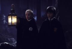Гарри и Драко в запретном лесу