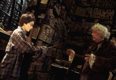 Гарри покупает волшебную палочку