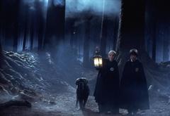 Гарри, Драко и Клылк в запретном лесу