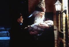 Альбус, Минерва и маленький Гарри