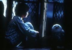 Гарри сидит на подоконнике в спальне Гриффиндора