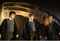 Гарри, Гермиона и Рон удивлены