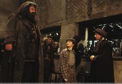 Гарри в Дырявом котле