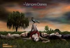 Елена с вороном, Стефан и Деймон