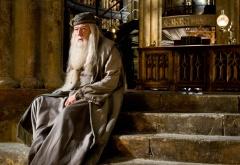 Альбус Дамбдор сидит на ступеньках