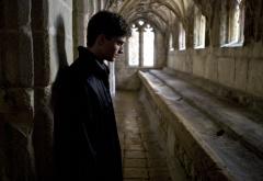 Гарри в замке