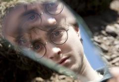 Гарри Поттер и зеркало Сириуса