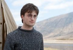 Гарри Поттер в свитере стоит у палатки на фоне гор
