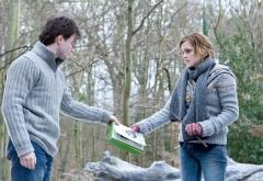 Гарри и Гермиона в зимнем лесу