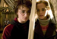 Гарри и Гермиона
