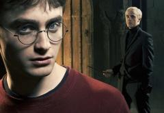 Гарри и Драко