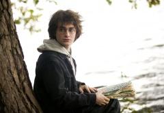 Гарри и сидит у дерева с книгой
