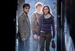 Трио входит в дверь