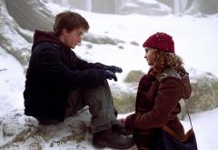 Гарри и Гермиона на третьем курсе