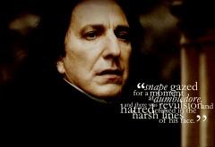 Северус Снейп перед убийством Дамблдора