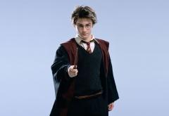 Гарри с волшебной палочкой