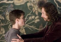 Гарри и Сириус у гобелена