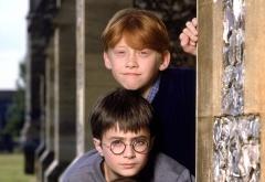 Гарри и Рон на первом курсе