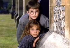 Гарри и Гермиона на первом курсе