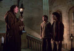Филч и мисис Норрис поймали Гарри и Рона в коридоре