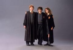 Трио на втором курсе