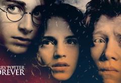 Гарри Поттер навсегда