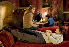 Гарри и Гермиона в гостиной Гриффиндора