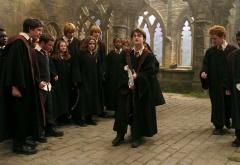 Гарри с метлой среди одногруппников